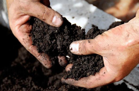 zwarte-grond_met_handen